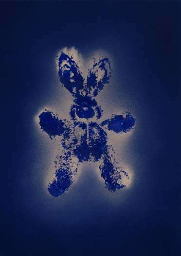 Bunny after Klein; acrylic and spray paint on canvas; 69x49; 2009
