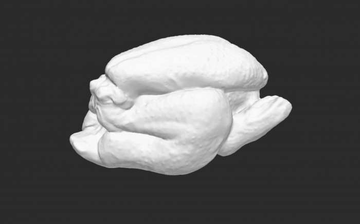 Is this a freshly printed chicken? (2019)